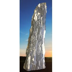 Zebra Monolith 583