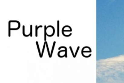 Purple Wave Gartensteine