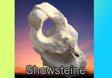 Showsteine